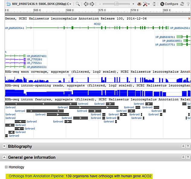 how to get gene sequence from ncbi