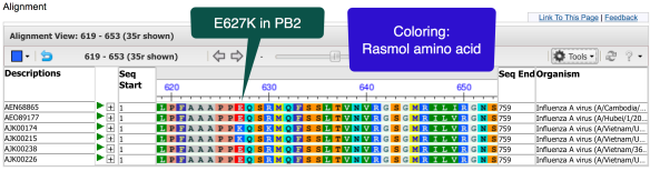 Rasmol amino acid coloring of aligned polymerase PB2 proteins.