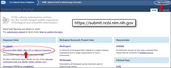 submission portal page with genbank link